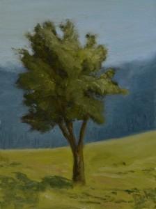 TreeSolo